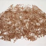 """Giuseppe Penone, """"Foglie (Feuilles)"""", 1990, Terre de Sienne sur fibre non tissée"""